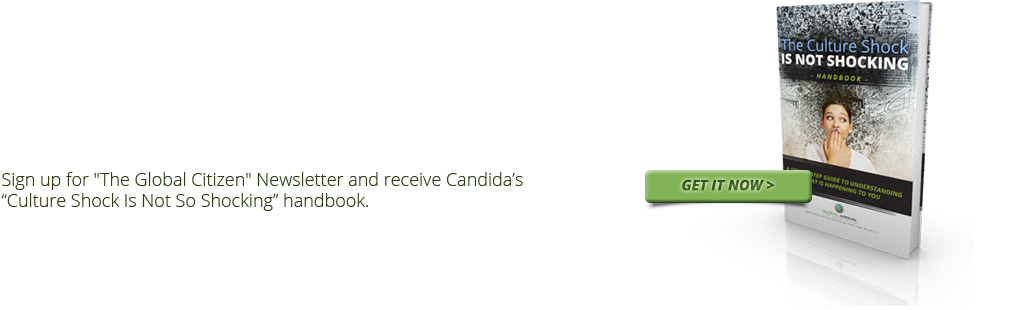 Sign up for 'The Global Citizen' Newsletter and recived Candida's eBook.